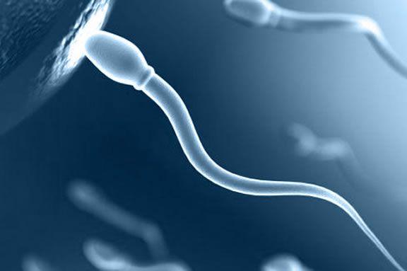Спермограмма в Москве